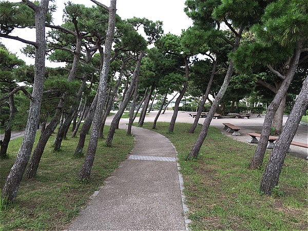 城ヶ島公園-3