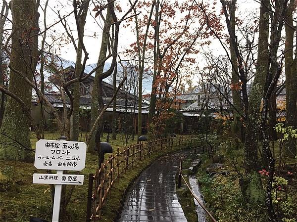 yufuin-tourism-12