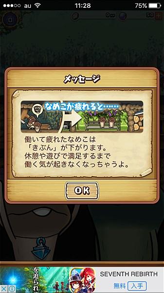 namekonosu- (4)